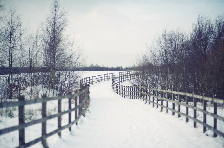 livialazar-5455de
